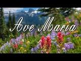 Ave Maria! Мировые Шедевры - Дмитрий Метлицкий &amp ОркестрBeautiful Instrumental music