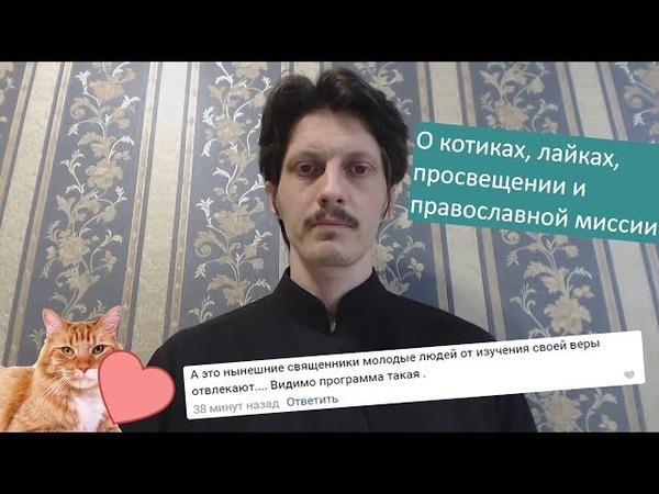 О котиках лайках просвещении и православной миссии