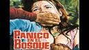 Assault Pánico En El Bosque 1970 Castellano