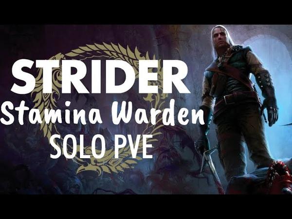Stamina Warden PVE Solo Build - STRIDER - ESO Murkmire