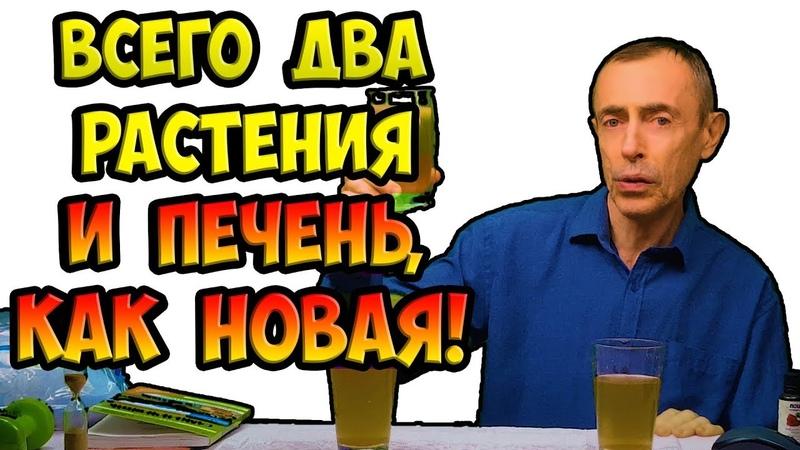 ЖЕЛЧНЫЕ ПРОТОКИ И ПЕЧЕНЬ Виталий Островский