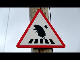 Дорожные знаки которые ПУТАЮТ 80% водителей