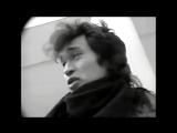 ✩ Моя 20 осень Город Live Виктор Цой рок-группа Кино