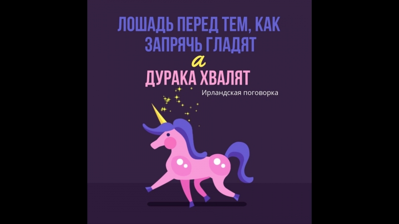 Лошадь перед тем как запрячь гладят а дурака хвалят Ирландская пословица