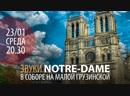 Звуки Notre-Dame Анонс концерта в Соборе Серия Mysterium Catholicum