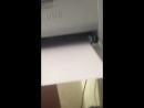 Принтер блять