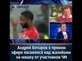 Андрей Бочаров в прямом эфире посмеялся над жалобами на мошку от участников ЧМ