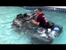 [Dusten Smith] Can-am XMR 1000 in swimming pool, SEND IT