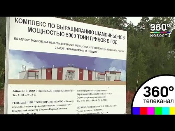 Компания Богородские овощи начинает строить в Подмосковье грибную ферму