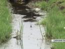 Грунтовые воды превращают село Агинское Саянского района в болото