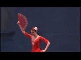 Дон-Кихот в Токио/Don Quixote Tokio С. Захарова, А. Уваров/Svetlana Zaharova, Andrey Uvarov