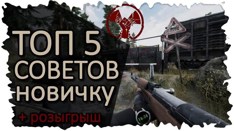 ТОП 5 СОВЕТОВ НОВИЧКУ В Will To Live Online РОЗЫГРЫШ