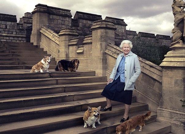 Королева Елизавета II попрощалась со своим последним корги