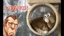 Приколы с котами ЗАСМЕЯЛСЯ ПРОИГРАЛ УГАР ДО СЛЁЗ Кот Мурзик изобретатель