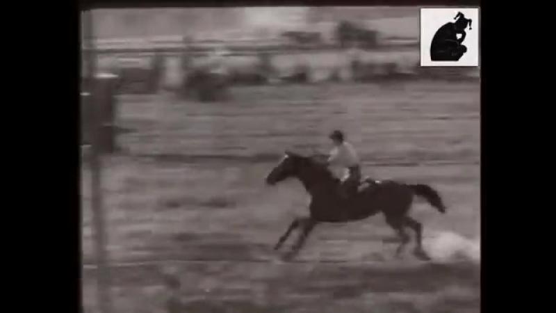 1963г. Змагання вершників.