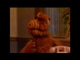 Alf Quote Season 1 Episode 21_Обдумаю