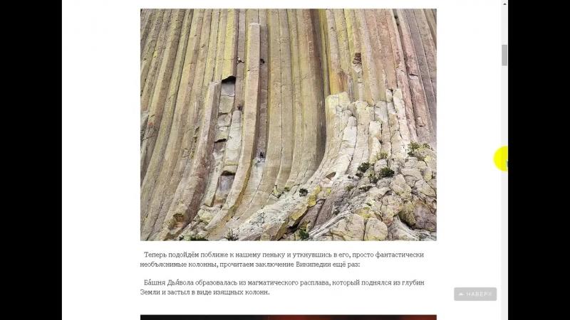 На Земле лесов нет! (Кремниевая жизнь на Земле была до нашей - углеродной - её следы и остатки).