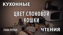 Читаем. Ольга Миклашевская Цвет слоновой кошки
