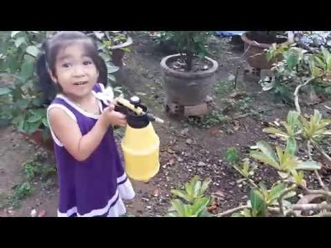 Bé Tưới Cây Cảnh-Chăm sóc Cây Bonsai-Cây Hoa Dấy-Hoa Dơn ❤ TyNa ToysReview TV ❤