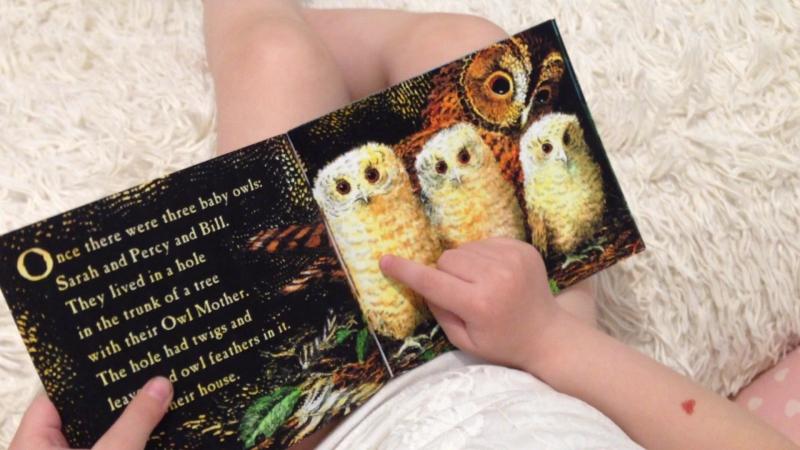 Книжка про совят. Интерпретация.