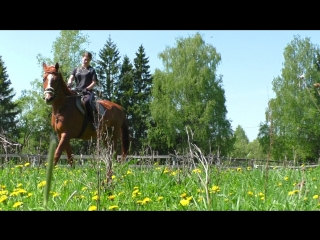 Kristina_videoportret(video_pro)