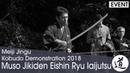 Muso Jikiden Eishin Ryu Iaijutsu Osonoe Tetsuro Meiji Jingu Kobudo Demonstration 2018