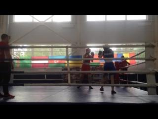 соревнования по боксу(синий угол)