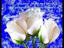 Doc203720071_479451212.mp4