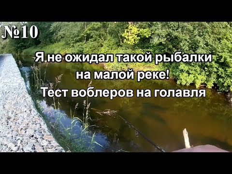 Я НЕ ОЖИДАЛ ТАКОЙ РЫБАЛКИ НА МАЛОЙ РЕКЕ! Тест воблеров на голавля Crazy fishing on the small river