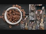 Сухой корм для кошек Leonardo Adult Complete 32/16