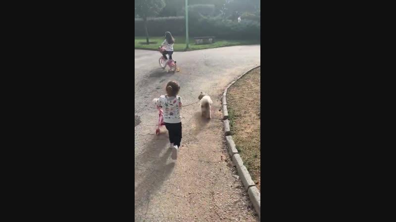 Девочки на прогулке
