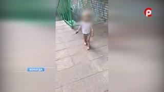О судьбе сестры убитой девочки в Вологде
