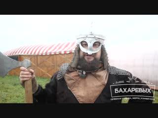 Викинги на усадьбе Бахаревых