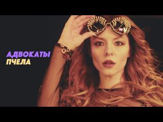 Адвокаты - Пчела (official)