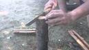Тундровый якут тест по сухой яблоне