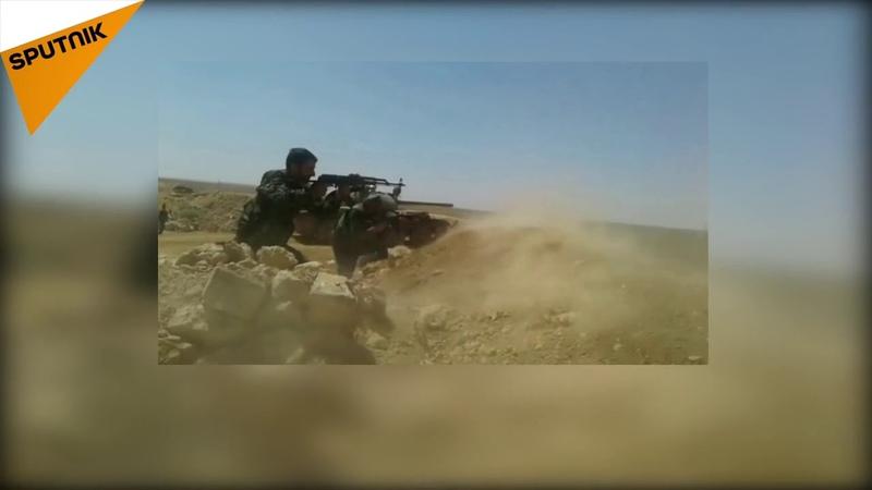 Сирийская армия реагирует на нападение, начатое «Фронтом Победы» на его точки в южной сельской местности Идлиба