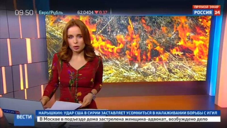 Новости на Россия 24 • Горящие шпалы на БАМе тушили 8 часов: видео