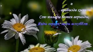 Хыянәт 🎤-җырлый Зинира ; Ризат Рамазановлар🌹 Айдар Тимербаев көе,Айдар Миңһаҗев сүзләре🌹