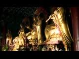 Hilight Tribe - Free Tibet Vini Vici Remix