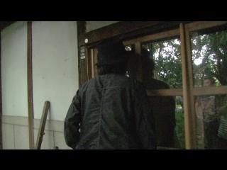 The Sion Sono / Jônetsu tairiku Presents Sono Shion to iu ikimono (2016)