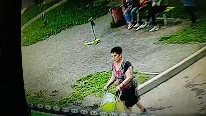 Ищем этих двух женщин в связи с кражей портмоне.