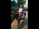 Первый раз катаемся на лошадке