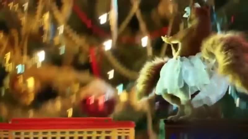 Chori-Squirrels