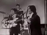 The Kinks - You Really Got Me (from British TV show Top Of The Pops 1964)