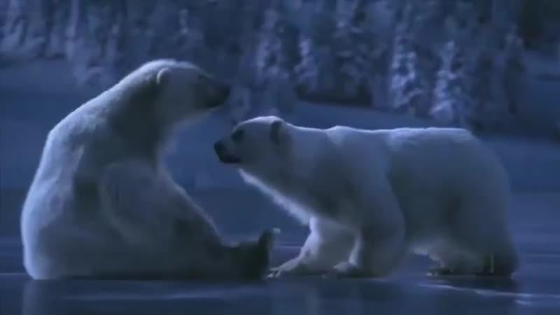Любовь встречается не только весной и летом,но и зимой...