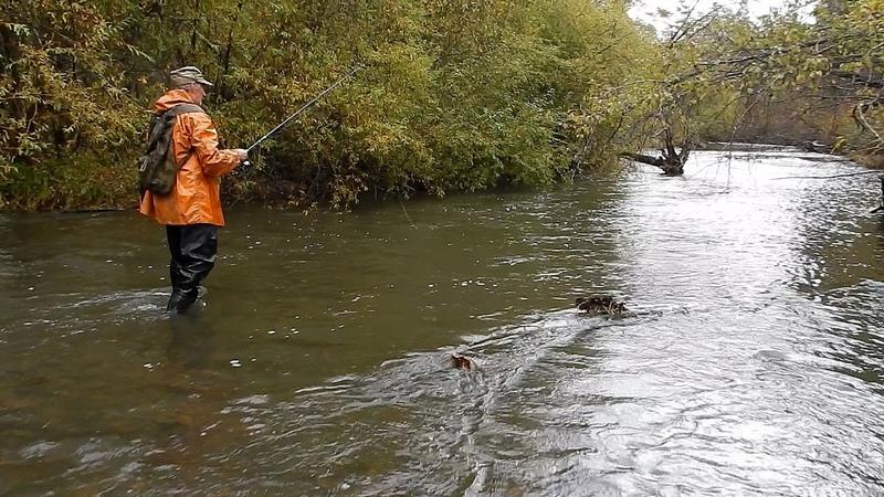 Рыбалка в Приморье Река Журавлёвка Хариус ленок 24 09 2018 г Как одеть швабру на крючок