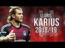 Loris Karius - Reborn - Insane Saves and Reflexes 2018/19