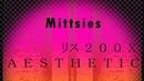 Mittsies [200X]AESTHETIC FULL ALBUM