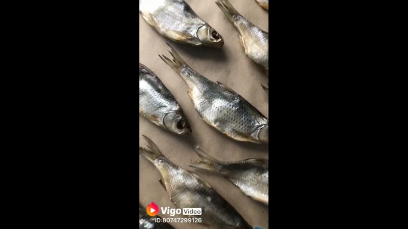 Рыба моя | Астраханские гостинцы