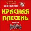 Красная Плесень. 20.10. Москва
